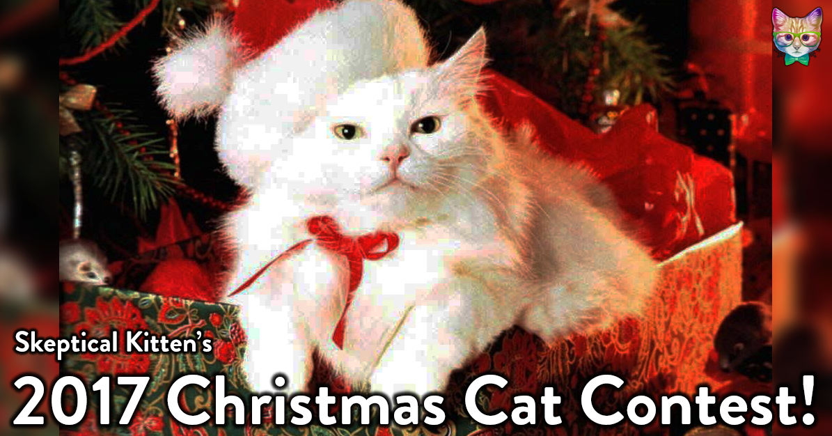 Skeptical Kitten\'s 2017 Christmas Cat Picture Contest!