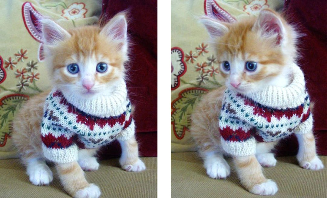 NOTHING ugly about this Christmas sweater! | SkepticalKitten.com